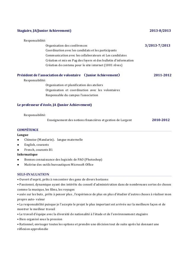competence cv site internet