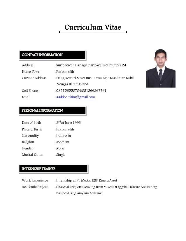 cv english information