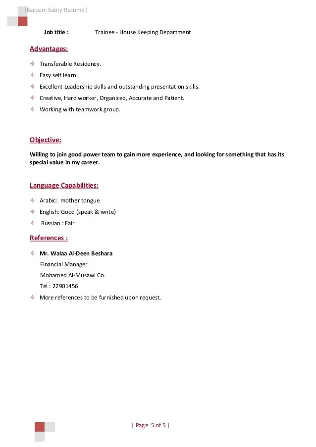 copy of a professional resumes