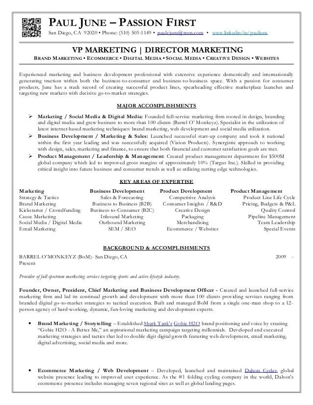 vp of marketing resumes - Josemulinohouse