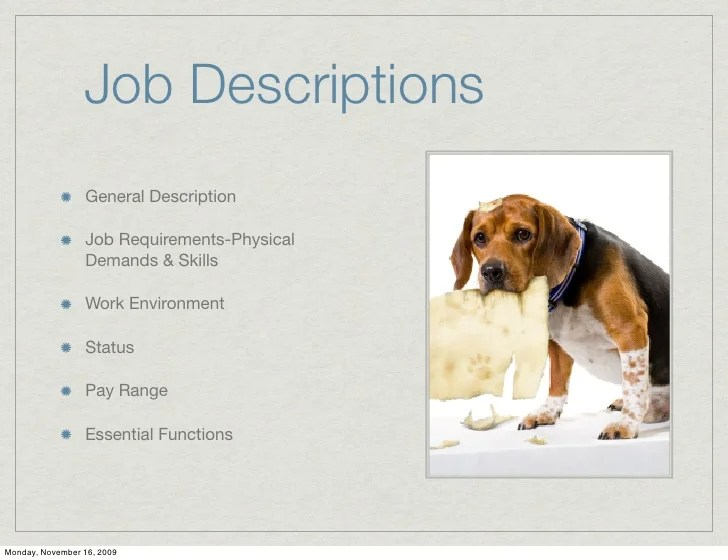 Job Description Medical Director  Resume Examples For College