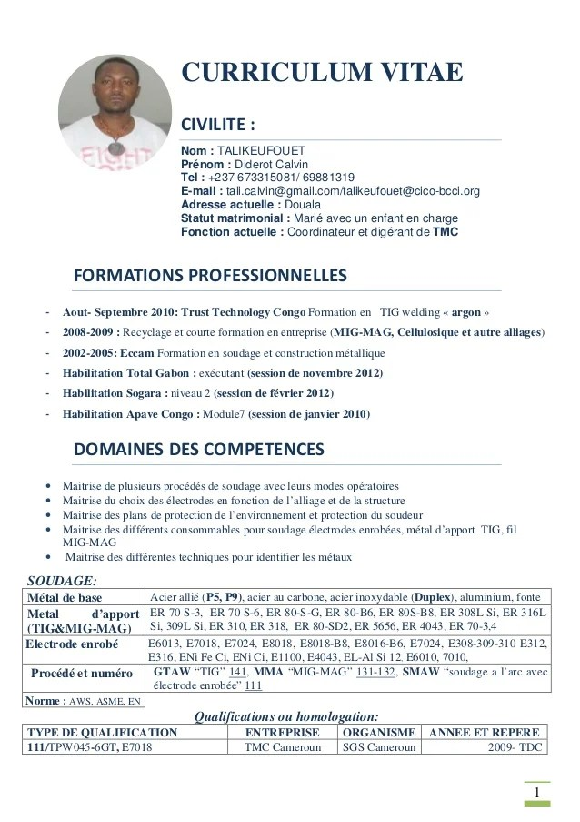 formation cv exemple