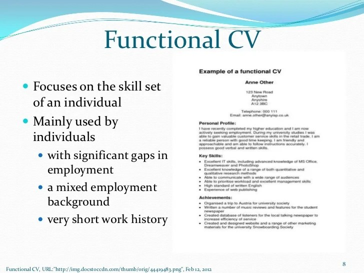 functional cv sample - Intoanysearch