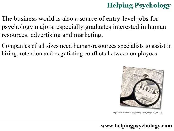 entry level jobs for business majors
