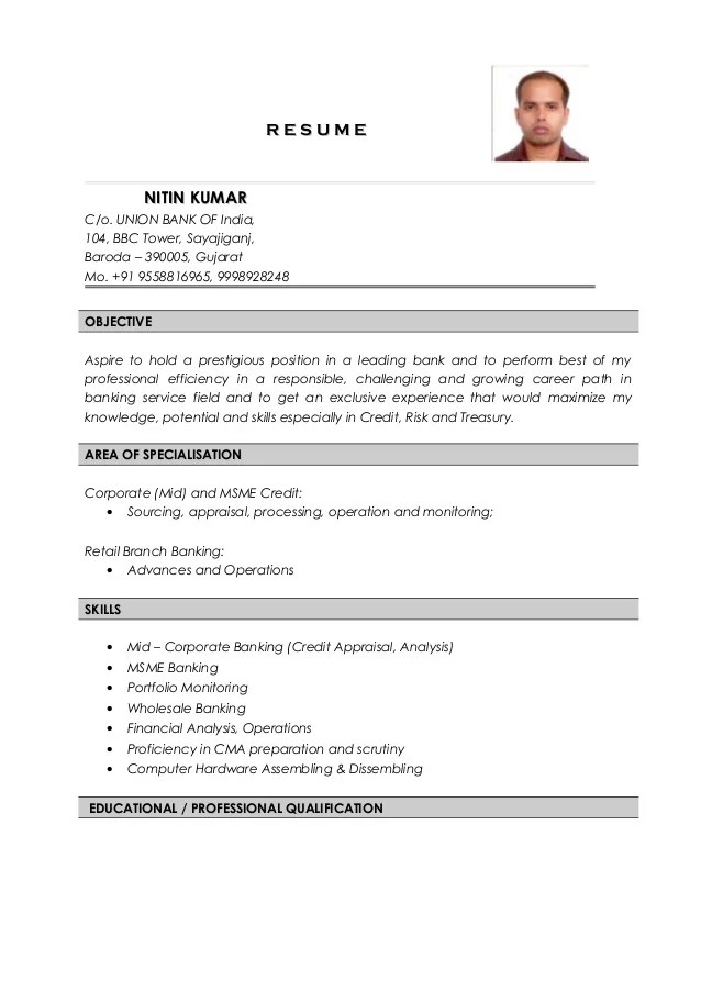 credit risk analyst resumes - Selol-ink - credit risk analyst sample resume