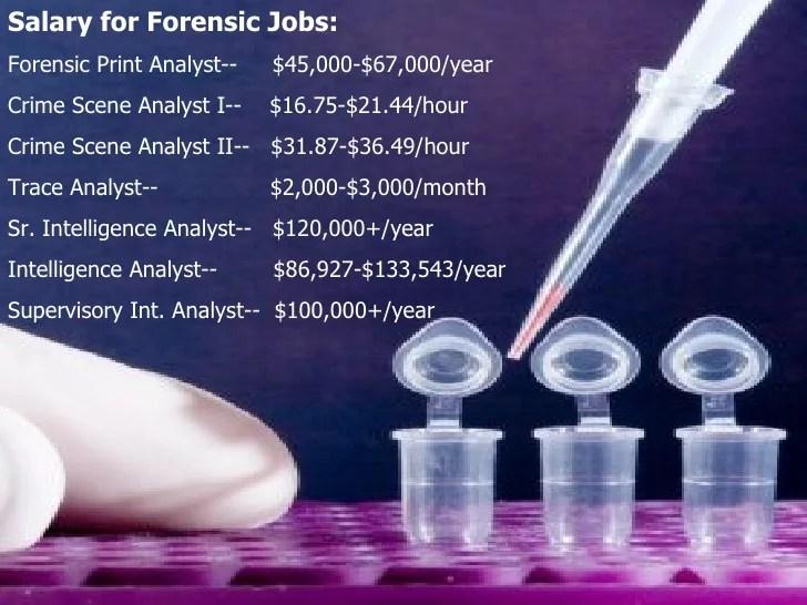 forensic dna analyst - Alannoscrapleftbehind