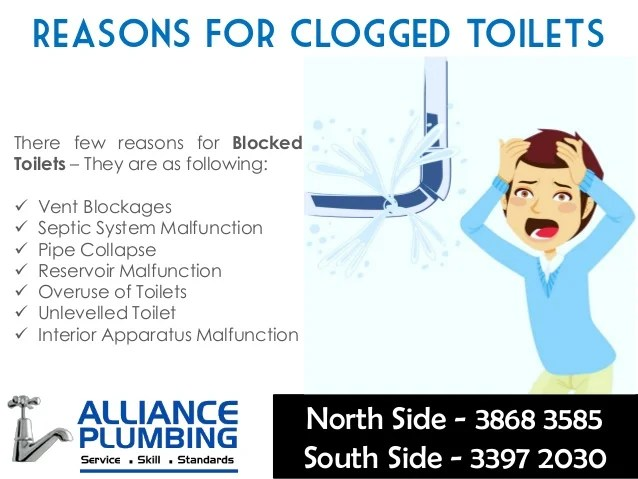 How To Fix A Clogged Blocked Toilet – Few Important Tips | Alliance …