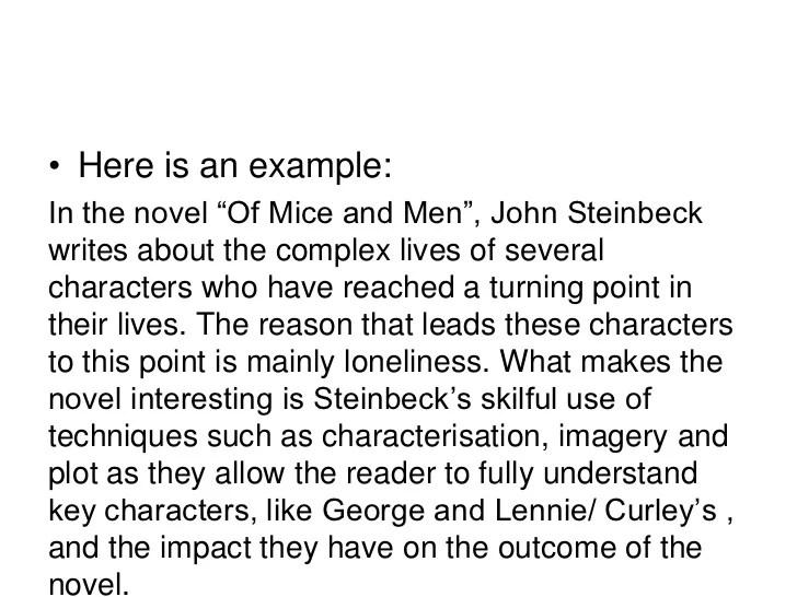 novel essay examples - Kenicandlecomfortzone - novel essays