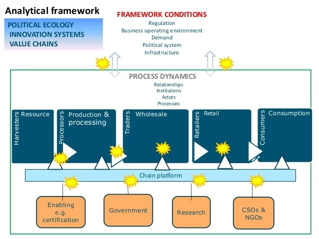 Round Flat Characters Definition Examples Study Ecosystem Services In Tropical Timber Value Chains