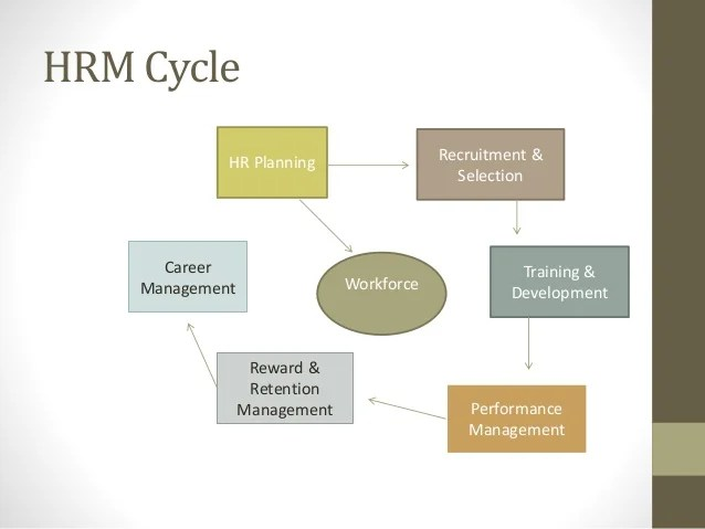 Human Resources Recruitment Selection Hiring Process Insight To Hrm