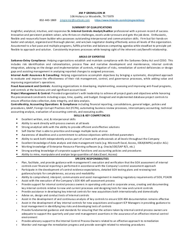 internal audit resume - Goalgoodwinmetals