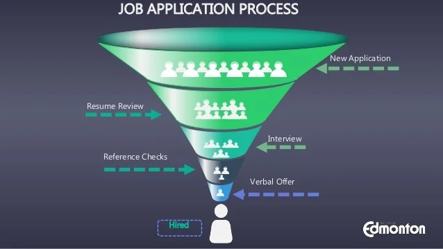 resume review job application