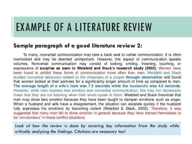 Example Literature Review Apa