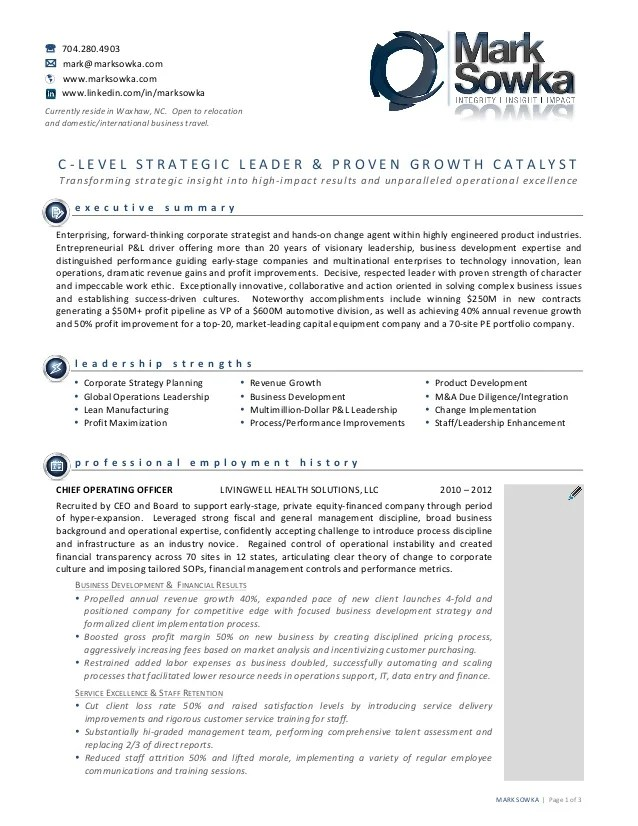 Standard Resume A Modern Professional Resume Builder Award Winning Resume For Mark Sowka Client Of Emprove