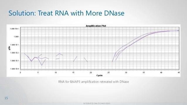 Understanding Melt Curves For Improved Sybrr Green Assay