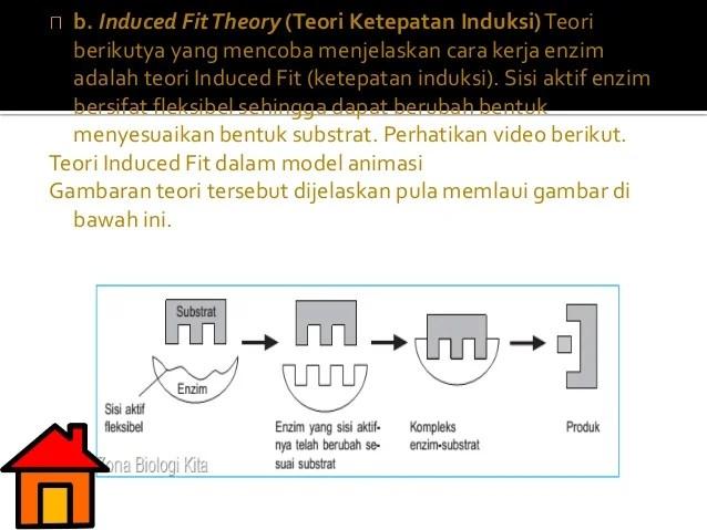 Metabolisme Andriyani Shs 2 Pati