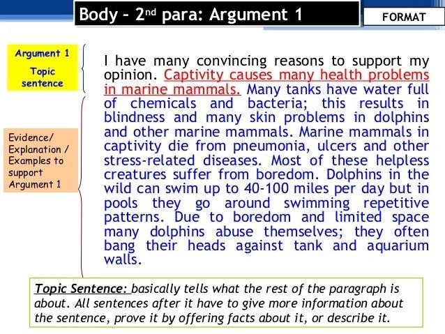 Argumentative Essay Format And Language Use