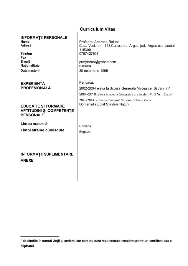 model de cv simplu completat download