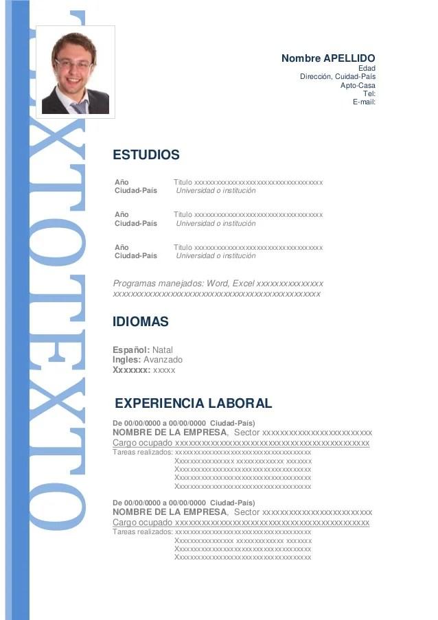 Modelo De Curriculum Vitae Formal
