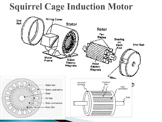 squirrel cage motor wiring diagram