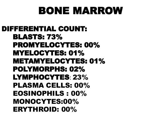 blood smear morphology