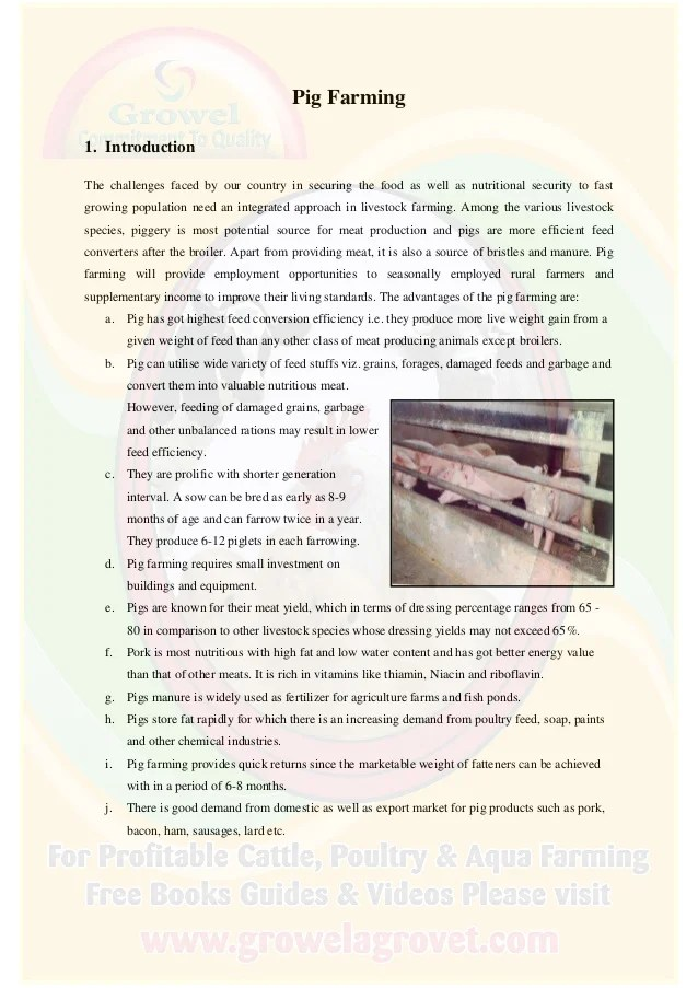 construction project report for bank loan