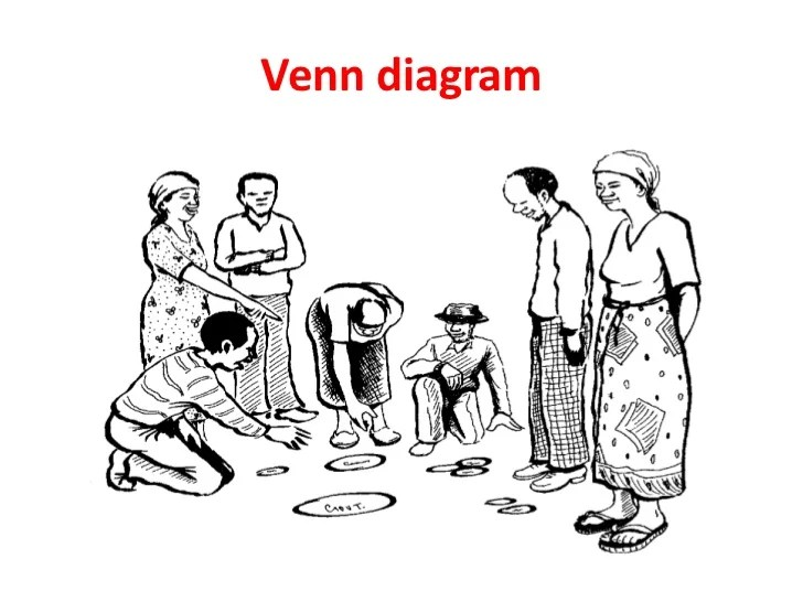 of level diagram orgamismscommunity