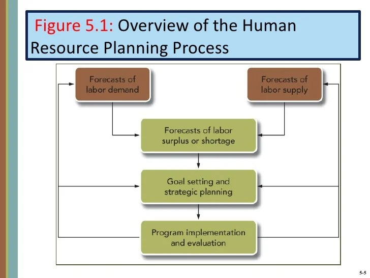 Human Resource Planning Process Or Steps Of Hr Planning Human Resource Management