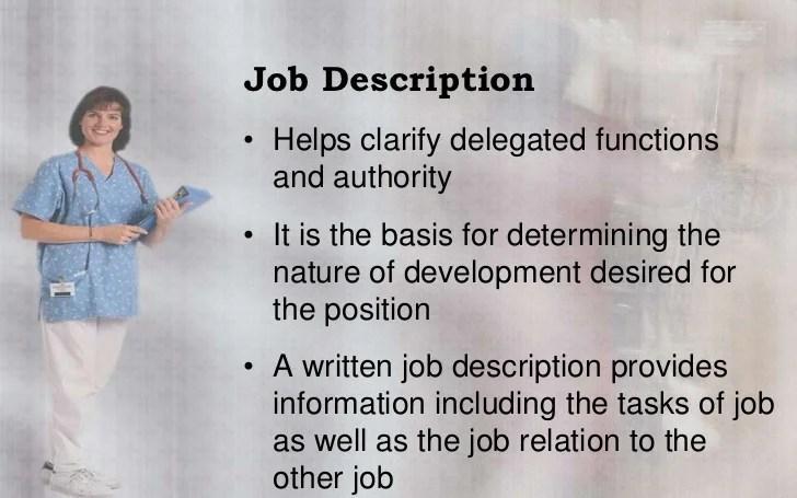 director of nursing responsibilities - Bire1andwap