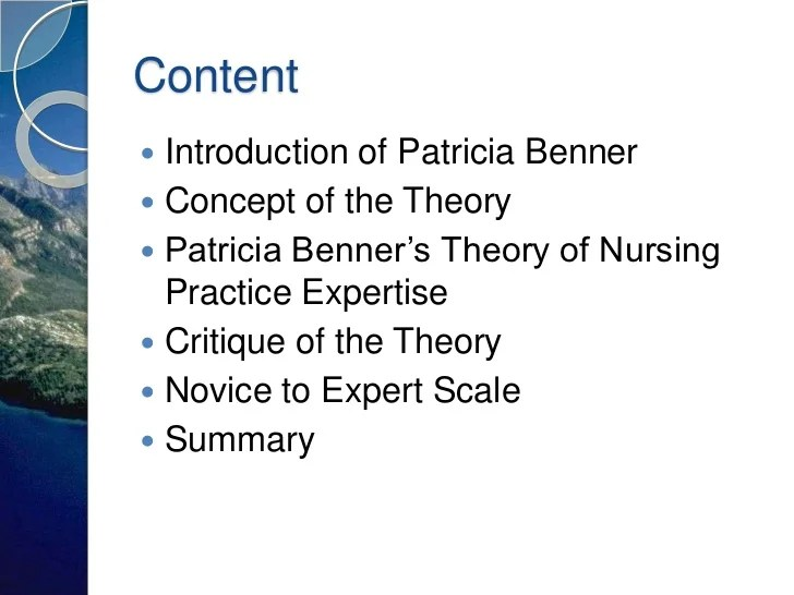 benner s novice to expert theory