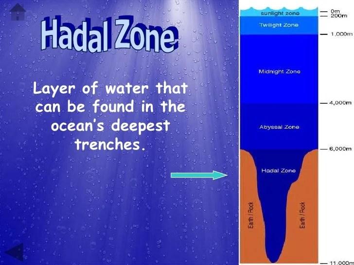 Ocean Powerpoint Presentation