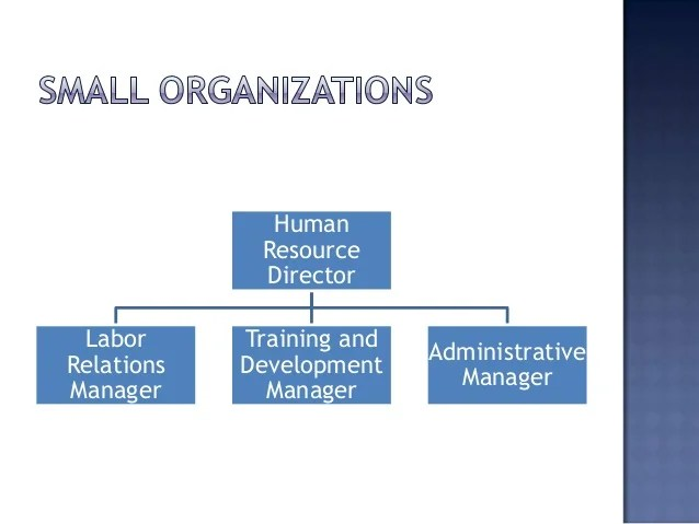 Human Resources Organizational Chart | Internship Cover Letter