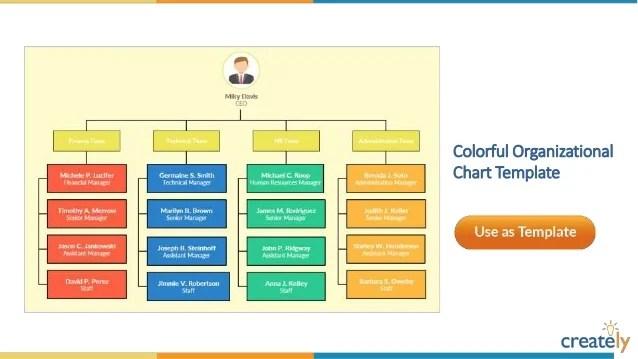 business structure chart template - Baskanidai