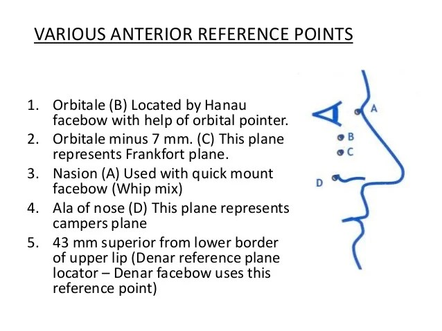 Reference C Wikipedia Orientation Jaw Relations And Face Bow