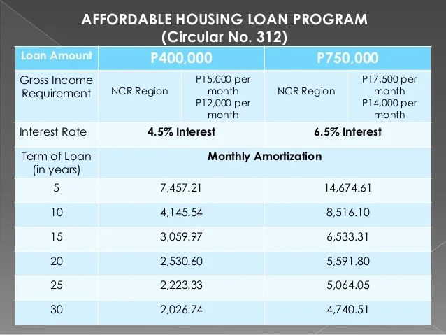 loan amortization program