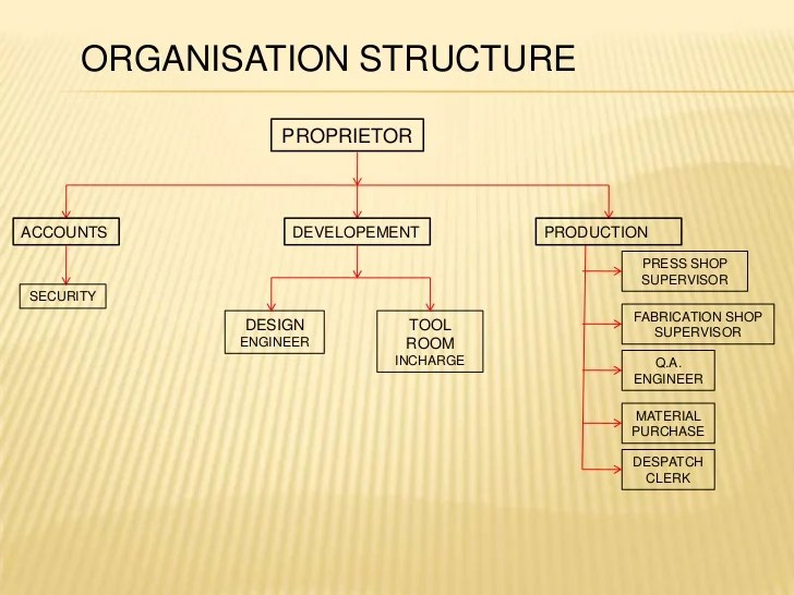 organisation structure and design notes