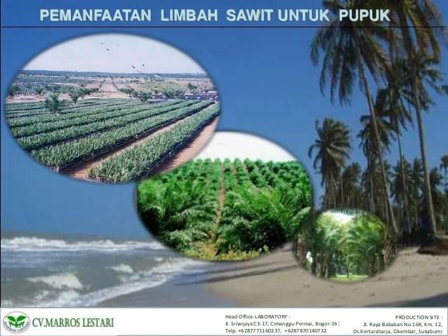 PEMANFAATAN LIMBAH SAWIT UNTUK PUPUKHead Fice LABORATORY PRODUCTION