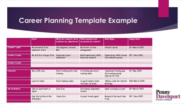 Career Path Plan | Doc - www.mittnastaliv.tk