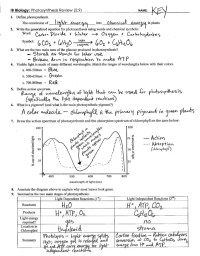 Photosynthesis Review Key (2.9)
