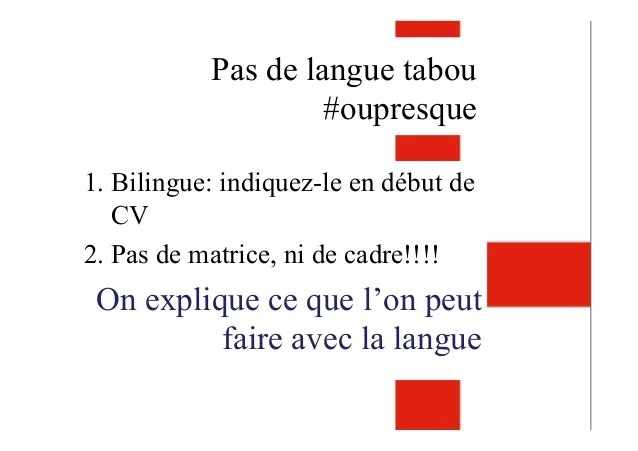 cv notion langue