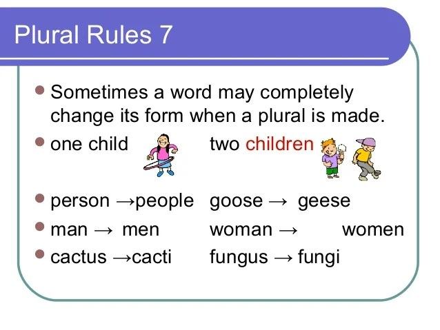 Plural Of Cactus Plural Rules