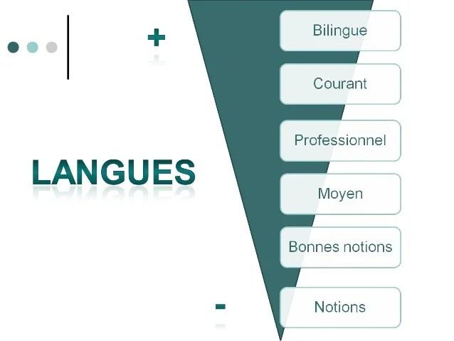 niveau de langue cv bilingue