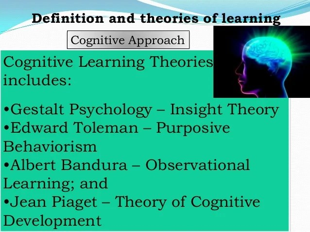 Learner: Definition and theories of learning, Student's Learning Styl…