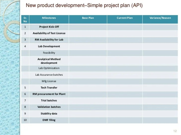 new product project plan - Intoanysearch - product plan template