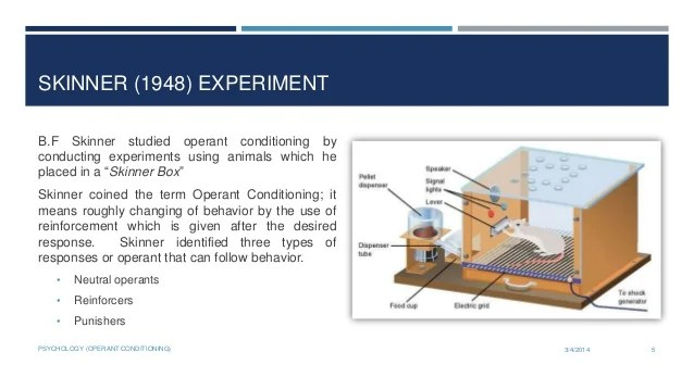 Operand Conditioning