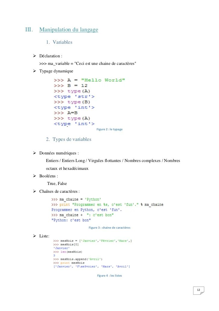 modele cv langage python