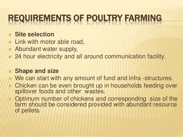 Business Plan Template For Poultry Farming Costumepartyrun