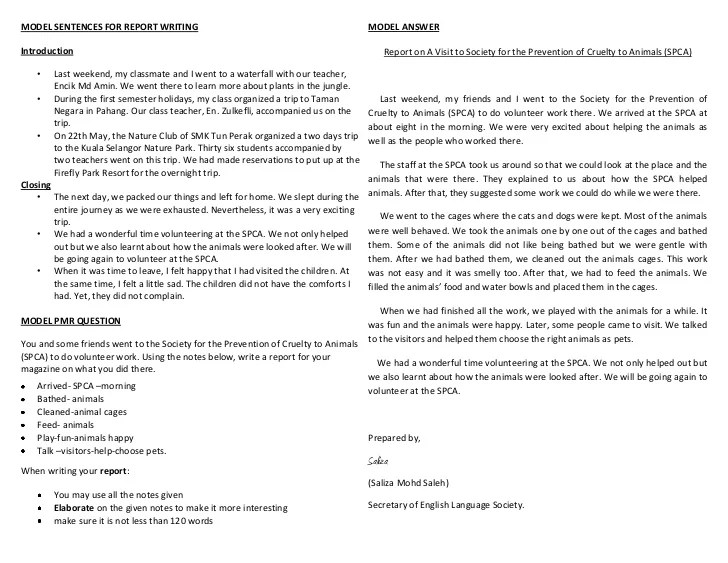 Custom english essay report pt3