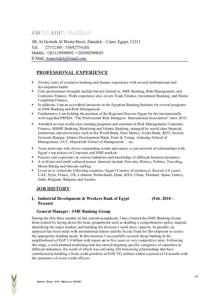 professional resume headings - Alannoscrapleftbehind