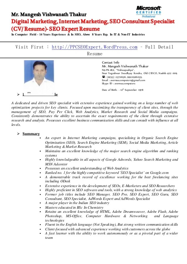 seo expert resume - Ozilalmanoof